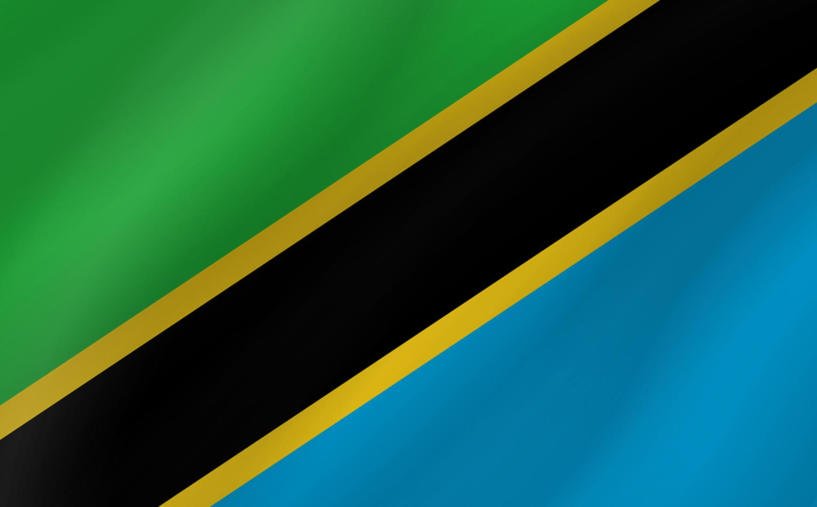 タンザニアの国旗